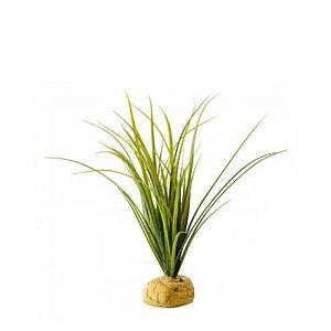 Planta Turtle Grass Exo Terra