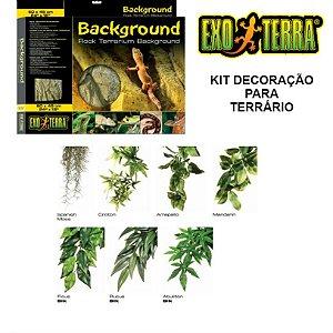 Kit Decoração Para Terrários Exo Terra