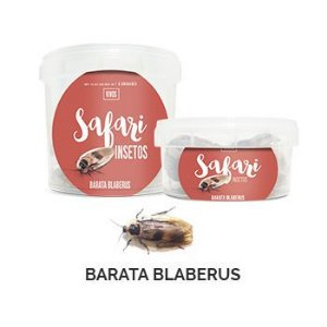 Barata Blaberus Safari 5 Unid 300 ml