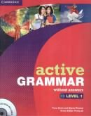 ACTIVE GRAMMAR LEVEL 1 WITHOUT ANSWERS