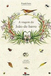 VIAGEM DO JOAO-DE-BARRO, A