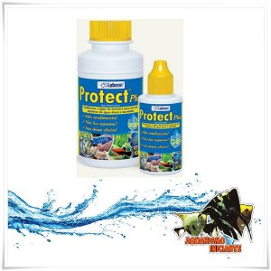 ALCON PROTECT PLUS