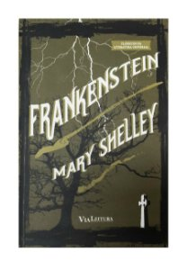 Frankenstein ou O Prometeu moderno - Mary Shelley