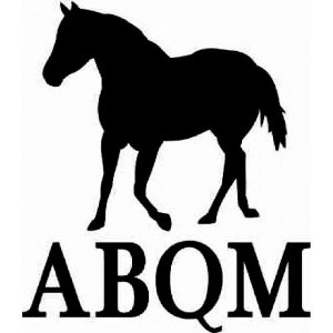 Adesivo Cavalo ABQM SC3713