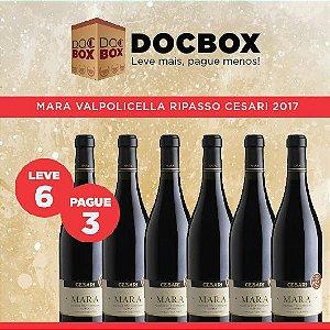 DOC BOX 6GFS - MARA VALPOLICELLA RIPASSO CESARI 2017
