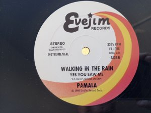 PAMALA - WALKING IN THE RAIN