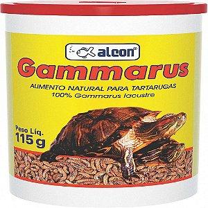 GAMMARUS 32GR F