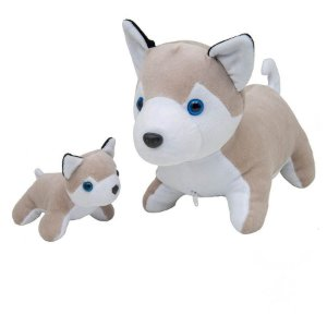 Husky Grávida com 1 Filhote