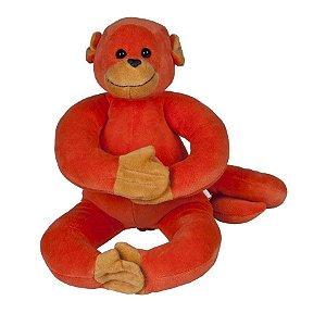 Macaco Barrigudinho