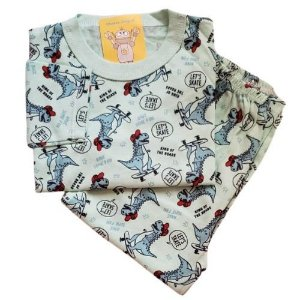 Pijama Infantil Malha 100% Algodão - 1 ao 3 - Dino Radical