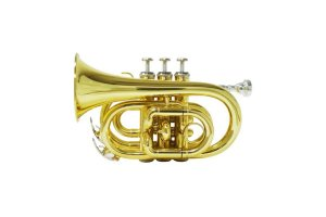 Trompete Pocket Dolphin Bb Sib Laqueado Dourado