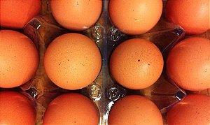Ovos 1/2 dúzia