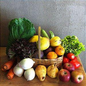 Cesta grande de produtos orgânicos