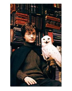 Ímã Decorativo Harry e Hedwig - Harry Potter - IHP02