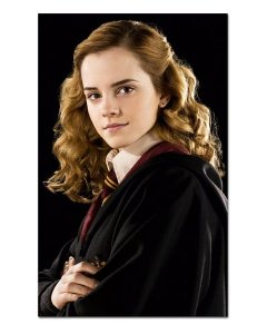 Ímã Decorativo Hermione - Harry Potter - IHP21