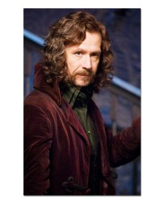 Ímã Decorativo Sirius Black - Harry Potter - IHP23