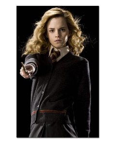Ímã Decorativo Hermione - Harry Potter - IHP24