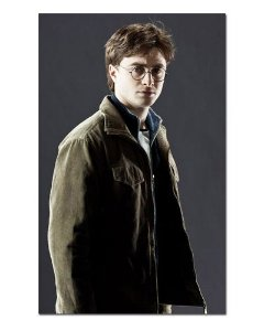 Ímã Decorativo Harry Potter - IHP30