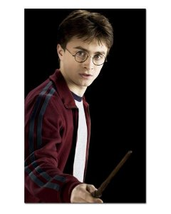 Ímã Decorativo Harry Potter - IHP33