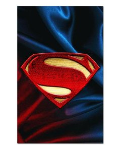 Ímã Decorativo Superman - DC Comics - IQD63