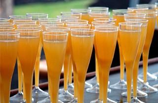 Taça Para Champagne Transparente- 125ml (5 unidades)