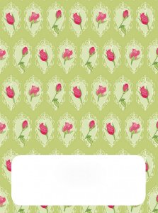 Place Card - Shabby Green (6 unidades)