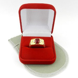 Anel Masculino Aro 18 Vermelho Folheado Ouro AN160-18VM