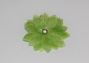 Laço Flor Verde