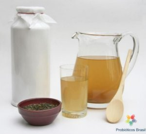 JUN (Kombuchá com Mel, Mushroom Tea, Honey Mushroom)