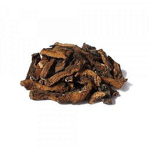 Cogumelo Funghi Chileno - 50g - Casa do Naturalista