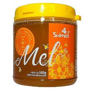 Mel de Abelha 100% Natural 500g