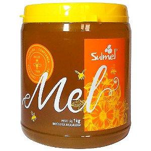 Mel de Abelha 100% Natural 1kg