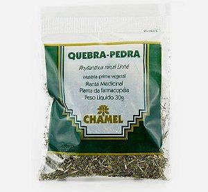 Planta Medicinal Quebra Pedra 30g