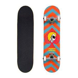 Skate Importado Profissional Birdhouse Mcsqueeb 7.5
