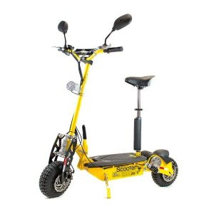 Patinete Scooter Elétrico Two Dogs 1000w 48v com Computador de Bordo