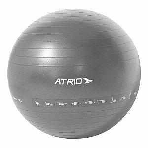 Bola de Ginastica Premium 60cm Cinza ES216 - Atrio
