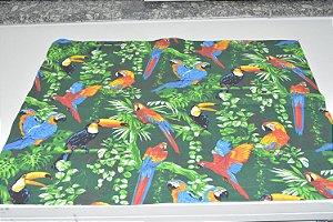 lugar americano papagaios