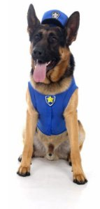 Colete Chase Patrulha Canina