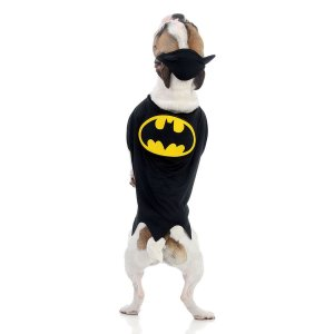 Capa Batman - Pet