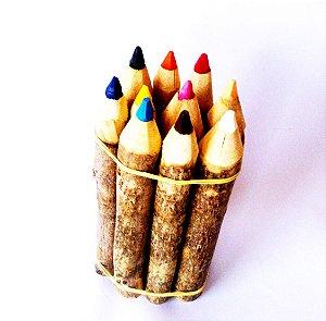 Lápis de Cor em madeira