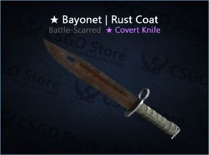 ★ Bayonet | Rust Coat (Battle-Scarred)