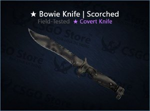 ★ Bowie Knife | Scorched (Field-Tested)