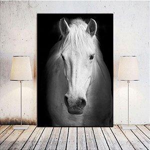 Cavalo branco - Emoldurado