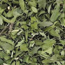 Chá Espinheira Santa - 30g (Maytenus ilicifolia)