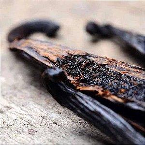 Fava de Baunilha Bourbon de Madagascar (1Unidade) 2g