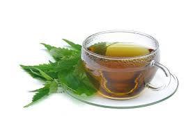 Chá de Folha da Fortuna (Saião) - 30g
