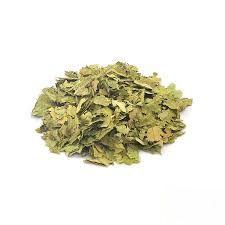 Graviola (Chá) - 30g