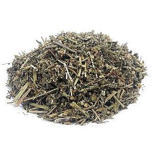 Picão Branco (Chá) - 30g - GALENSOGA PARVIFLORA