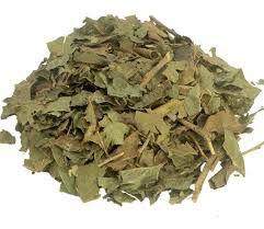 Chá de Porangaba (Bugre) - 30g