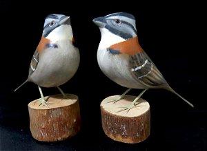 Miniatura madeira Tico-Tico